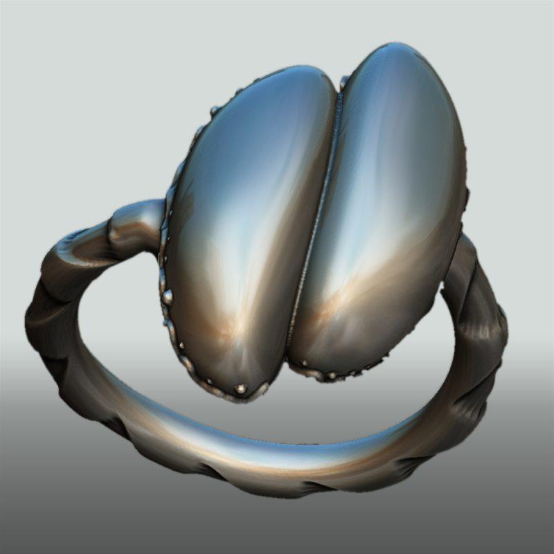 Erotikschmuck, Ring Coco de mer, silber, Ansicht 1